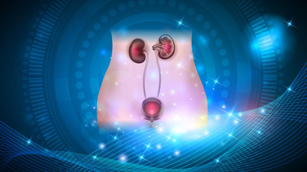 zapalenie układu moczowego - uklad